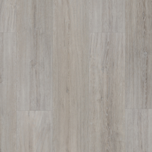 Evolution Tackdry - Rovere Jura