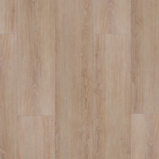 Evolution Tack Dry Plus - Rovere Lavato