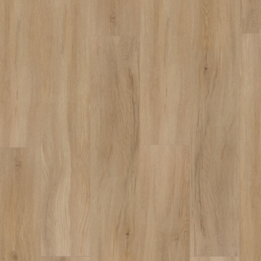 Evolution Tack Dry Plus - Rovere Europeo