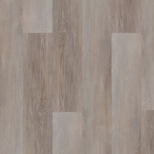 Evolution Trend - Rovere Canyon