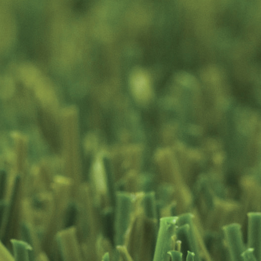 Green Soft - Green Soft
