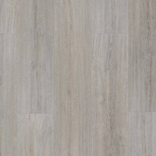 Evolution Tackdry Plus - Rovere Jura